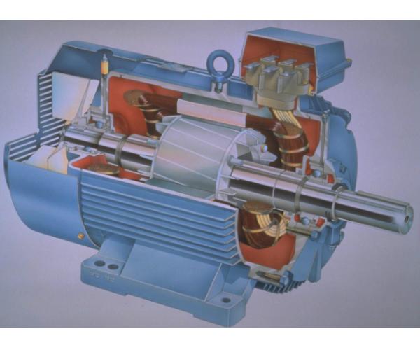 纯电动车交流电机解剖模型